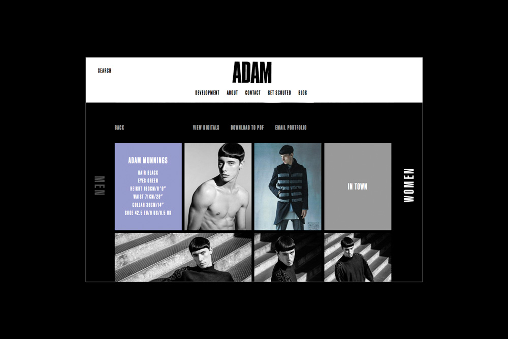 adam_identity9