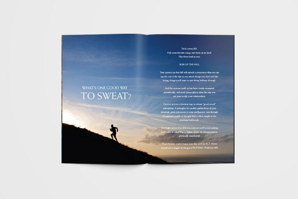 tornhawk_campaign_brochure3