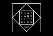 Flatland x Nitemind
